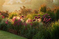 english garden shrubs and plants Garden Shrubs, Garden Landscaping, Landscaping Ideas, Landscape Architecture, Landscape Design, The Secret Garden, Garden Cottage, Prairie Garden, Garden Borders