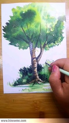 drawing trees step by step / drawing trees - drawing trees step by step - drawing trees simple - drawing trees pencil - drawing trees tutorial - drawing trees step by step pencil - drawing trees step by step simple - drawing trees easy Tree Painting Easy, Tree Watercolor Painting, Watercolor Landscape, Butterfly Painting Easy, Butterfly Drawing, Watercolor Plants, Step By Step Watercolor, Watercolor Video, Watercolour Tutorials