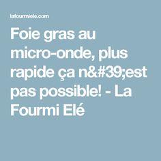 Foie gras au micro-onde, plus rapide ça n'est pas possible! - La Fourmi Elé