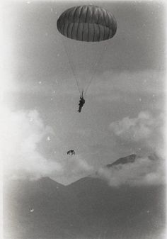 Photo Gallery: The History of Parachuting Dogs