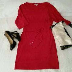 Amazing Red Sandra Darren Knit Dress