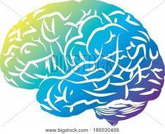 #cerebro #ilustracion #dibujo #vector #mente #pensar #salud #mental #psicologia #psiquiatria #neurologia #neurona #loco #orate #manicomio #depresion #ansiedad #stress