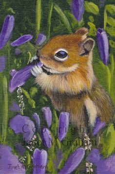 Chipmunk amongst the flowers / Wildlife / Animal / SFA - An original hand painted animal acrylic painting by Australian Artist Janet Graham