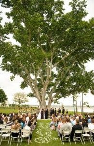 wedding under big tree outdoor florida ceremony waterfront naples fort myers