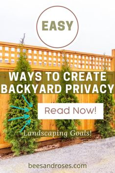 "Fences are not for everyone. You've heard it said ' Don't fence me in"". IF you prefer the look of something besides a fence, but still would like privacy, read this post. There are so many options with plants to create a beautiful more natural looking wall of privacy. Read on for more info. #privacyideas #privacyplants #beesandrosesblog Diy Backyard Fence, Backyard For Kids, Backyard Projects, Backyard Landscaping, Backyard Ideas, Outdoor Privacy Panels, Privacy Plants, Outdoor Curtains, Patio Trellis"
