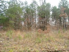 25 Best Under $1,000 Cheap Land For Sale images in 2018