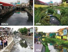 """""""Bio-remediation is one of the love stories of the new paradigm. These images are of the healing of polluted waterways with floating gardens in Manila, Philippines. Aquatic Ecosystem, Pantheism, Modernisme, Water Management, Manila Philippines, Go Green, Permaculture, Mother Earth, Urban Design"""