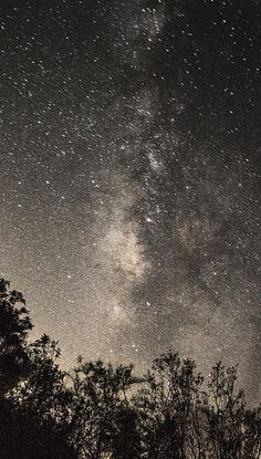 Our milky Way. A galaxy.