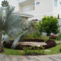 Paisagismo residencial Plants, Residential Landscaping, Log Projects, Plant, Planets