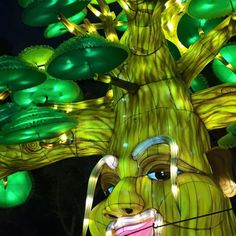 Magic tree Dubai glory garden