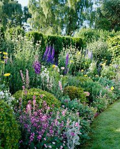Small Cottage Garden Ideas, Cottage Garden Plants, Garden Shrubs, Shade Garden, Garden Beds, Cottage Garden Borders, Garden Paths, French Garden Ideas, Garden Design Ideas