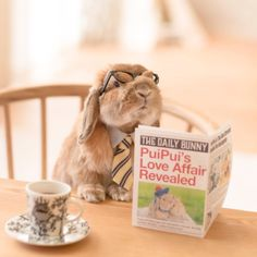8:30 AM - Reading the newspaper with the morning coffee
