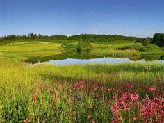 Landscape Poland