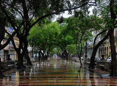 Paseo del Prado de La Habana despues de  la lluvia