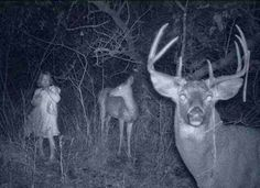 What hunters found on their night cameras...?