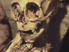 Giant Mummy Discovered in Peru