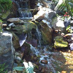 Beautiful waterfall and rocks from the Muttart Conservatory in Edmonton, Alberta, Canada