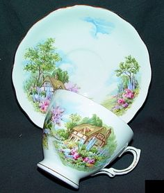 I have one like this in my teacup collection (Royal Vale bone china E170 made in England)