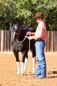 Clinton Anderson - Deworm your horse
