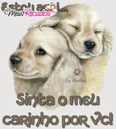 Carinho - Imagens de Carinho WhatsApp e Facebook