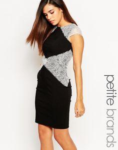 Платье-футляр с кружевными вставками PaperDolls Petite