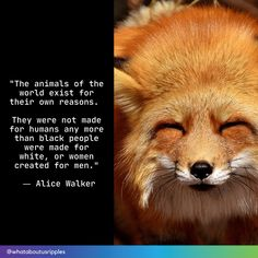 """""""The animals of the world exist for their own reasons. They were not made for humans any more than black people were made for white, or women created for men."""" ― Alice Walker Beautiful Love Stories, Beautiful World, Alice Walker, Challenge The Status Quo, Stop Animal Cruelty, Human Trafficking, Persecution, Animals Of The World, Black People"""