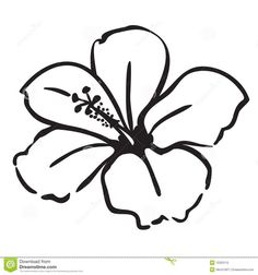 Hibiscus Illustration By Pams Stock Sample 432686 Clipart
