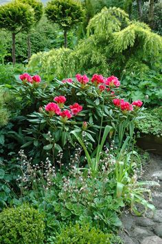 Garden | HAVETID