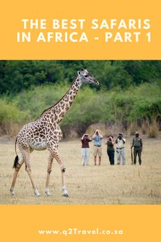 Travel offers African safari tours in 13 countries in South and East Africa. Here are a few of my favourite safari destinations. Honeymoon Ideas, African Safari, East Africa, Tanzania, Family Travel, Giraffe, Tours, Adventure, Country