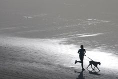 "HowStuffWorks ""Top 10 Tips for Running with Your Dog"""