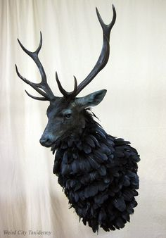 Weird City Taxidermy | The Ravenstag, or Nightmare Stag, from NBC's Hannibal :: Deer + Raven, surprising good idea!