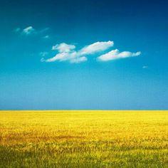 파란색. 노란색 대비. 전 사진과 달리 화창해보인다.