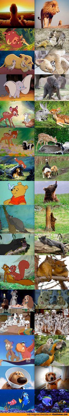 A1+ - ¿Cuál es tu película de dibujos animados favorita?, ¿por qué te gusta?. ¿Cuál no te gusta?, ¿por qué?