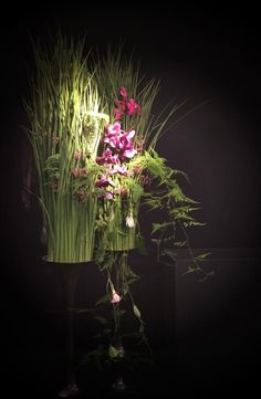 Tomas De Bruyne Floral Design at Enflor Garden Fair.