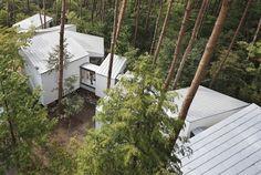 木々こそが森の正当な住人──建築家・河口佳介が考える、自然と人のリアルな共生。