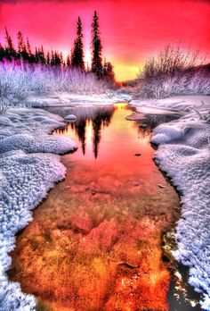 winter sunset by beautiful sunset travel trees winter Beautiful Sunset, Beautiful World, Beautiful Places, Stunningly Beautiful, Amazing Places, Pretty Pictures, Cool Photos, Landscape Photography, Nature Photography