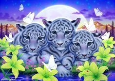 Little Brothers - white tigers, lilies, flowers, love four seasons, attractions in dreams, spring, animals, paintings, butterfly designs, big wild cats, butterflies
