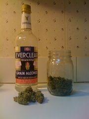 Ingredients for Cannabis Tincture, THCristi you tha shit girl, lol