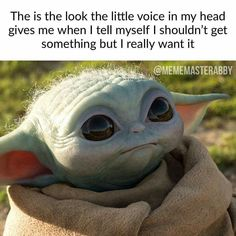 Listen to one of the greatest & informative podcasts on the planet! You never know which entertaining guest or what. Yoda Pictures, Yoda Images, Funny Pictures, Yoda Meme, Yoda Funny, Reylo, Imagen Natural, Star Wars Jokes, Disney Memes