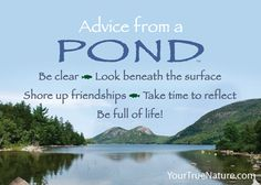 Advice from a Pond - Jumbo Magnet