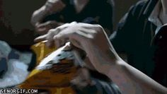 How to open a bag of chips