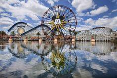 File under Stupid Guest Tricks – Selfie Stick Stops Ride | The Disney Blog