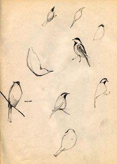 Bird sketches, from 1955, sketch book,  by Leonard Maurer