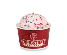 Cold Stone Creamery Sprinkleberry Kid's Ice Cream