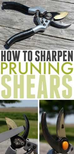 If your pruning shears have gotten dull, or if you just want to keep them working as effectively as possible, follow these steps to learn how to sharpen pruning shears! #SharpenPruningShears #SharpenGardenClippers #Gardening #Garden