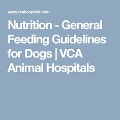 Nutrition - General Feeding Guidelines for Dogs | VCA Animal Hospitals