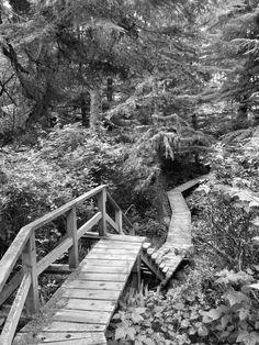 adventurefolk: #Hike.