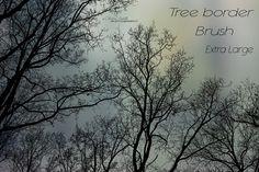 trees without leaf free brushes Photoshop Free brushes, Photoshop Fonts   BRUSHEZ photoshop.cc