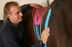 Kinesio-taping for your horse - seems a bit odd perhaps, but more professional therapists and Vets are finding it does work!
