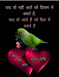 Green Butterfly, Shayari Image, Good Night, Nighty Night, Good Night Wishes